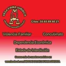 5_Violencia, Concubinato, Dependencia economica, Interdiccion
